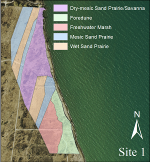 map of Site 1 showing an example of the habitat delineations from 2014